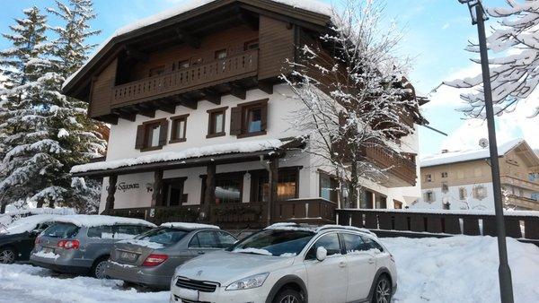 Photo exteriors in winter Sayonara