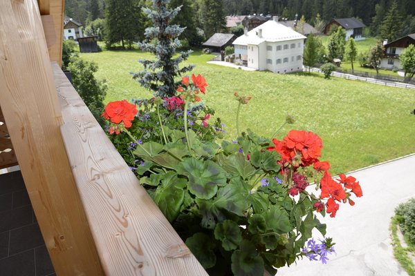 Photo of the balcony Corn