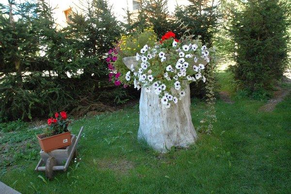 Foto vom Garten St. Vigil