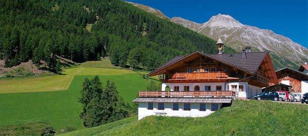 Sommer Präsentationsbild Schmiedhof - Ferienwohnungen 1 Blume