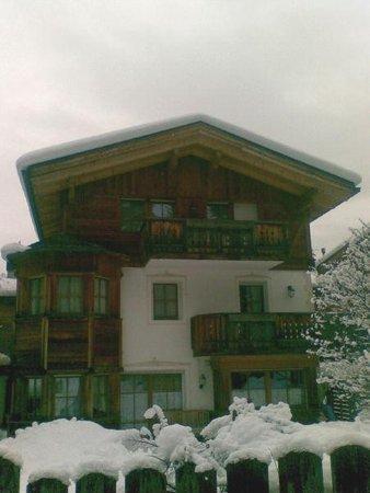 Foto invernale di presentazione Appartamenti Ciasa Alexander