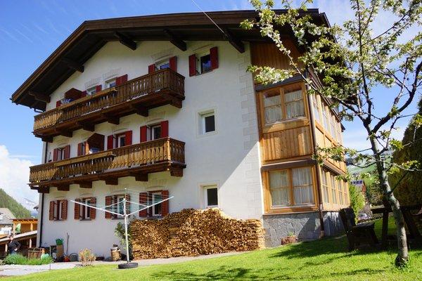 Foto Außenansicht im Sommer Ciasa Villa Maria