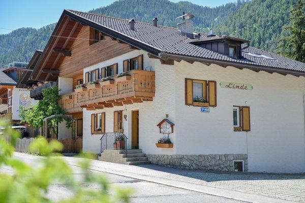 Photo exteriors in summer Villa Linde