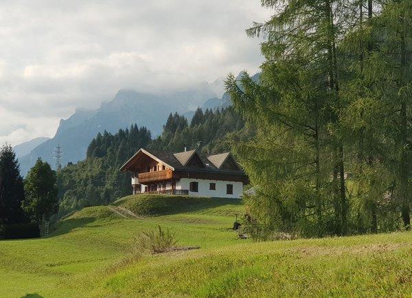 Foto Außenansicht im Sommer Casa Tarin 32