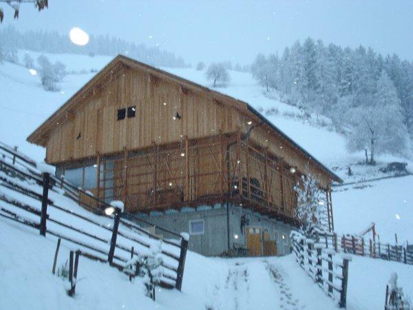 Foto esterno in inverno Lü de Bolser