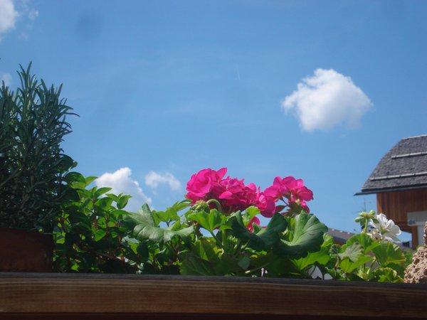 Foto del balcone Lü de Bolser