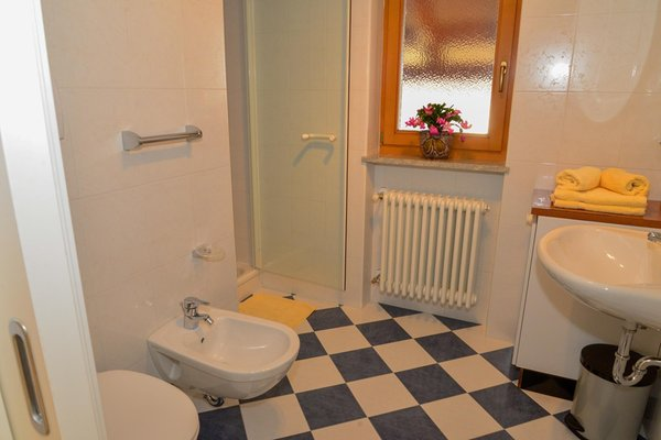 Photo of the bathroom Farmhouse apartments Ciasa Cone da Val