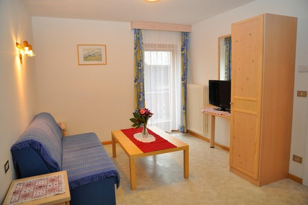The living area Ciasa Cone da Val - Farmhouse apartments 3 flowers