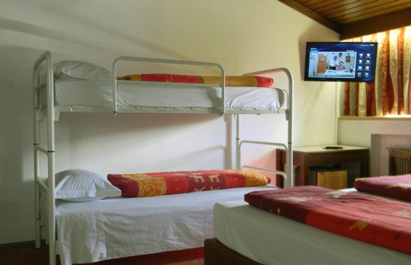 Photo of the room Hotel Bologna