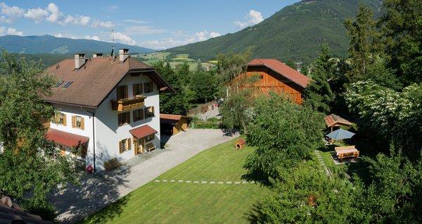 Sommer Präsentationsbild Apartments Oberparleiter Bachlechnerhof