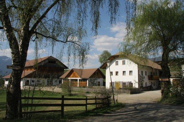 Foto estiva di presentazione Großflatscherhof - Appartamenti 3 fiori