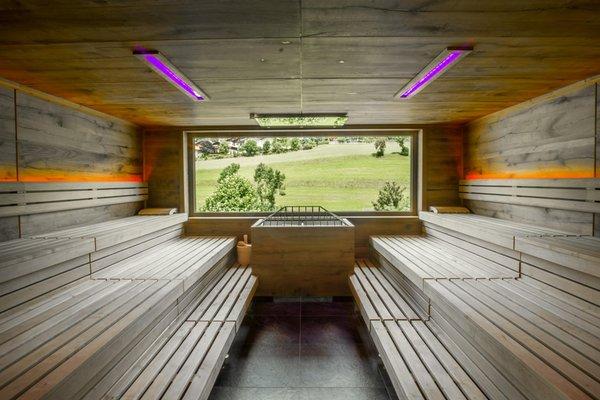 Photo of the sauna Perca / Percha
