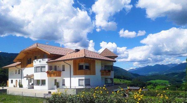 Foto esterno in estate Stefansdorf