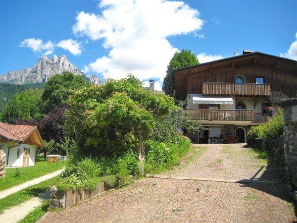 Summer presentation photo Apartment Nel Giardino del grande Tiglio