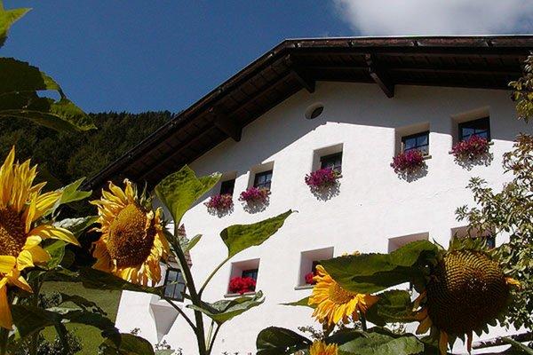 Foto esterno in estate Tuene