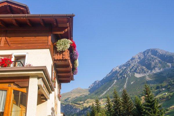 Foto Außenansicht im Sommer Rosengarden Alpine Residence