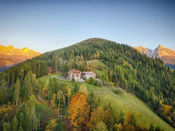La posizione B&B + Appartamenti in agriturismo Grotthof Ega (Obereggen - Nova Ponente)