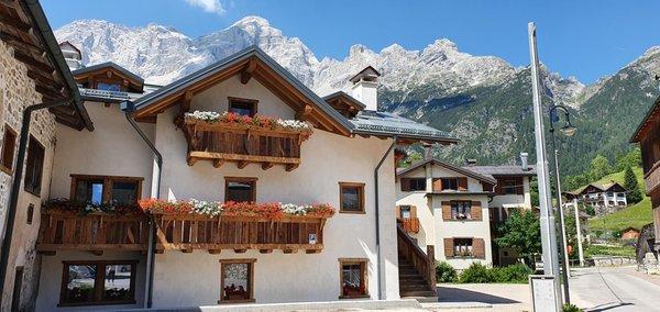 Foto estiva di presentazione Stella Alpina Suite