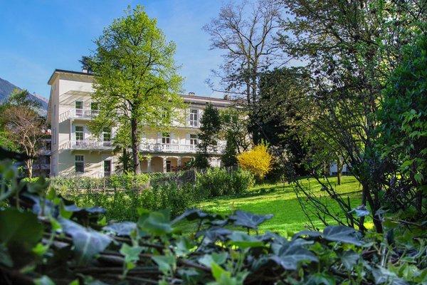 Foto estiva di presentazione Residence Diana - Camere + Appartamenti 3 stelle