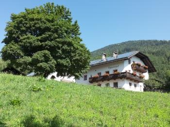 Sommer Präsentationsbild Ferienhaus Thalackerhof