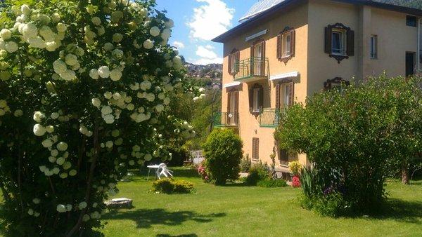 Foto estiva di presentazione Terrazzo sulle Alpi - Casa vacanze