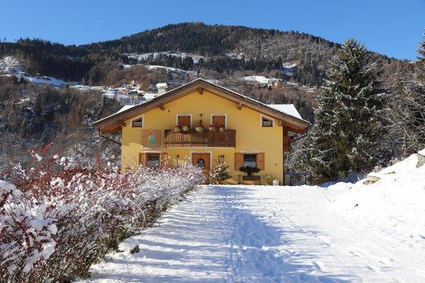 Foto invernale di presentazione Bed & Breakfast Eco-Baita Natura Spensierata