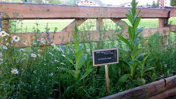Osteria Plazores - rustic sleep - Ferienwohnungen auf dem Bauernhof 3 Blumen St. Vigil