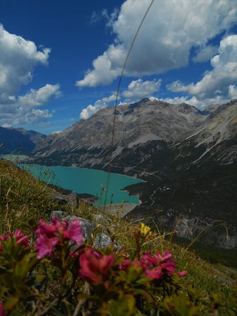 Photo gallery Valdidentro (Bormio and surroundings) summer