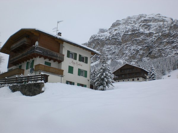 Foto invernale di presentazione Appartamenti Azalea