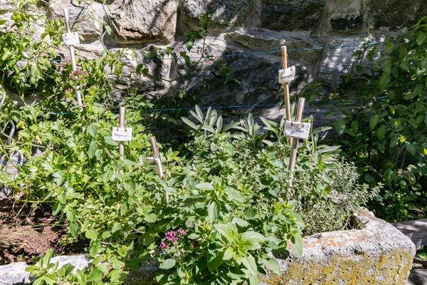 Foto vom Garten Mals - Schleis