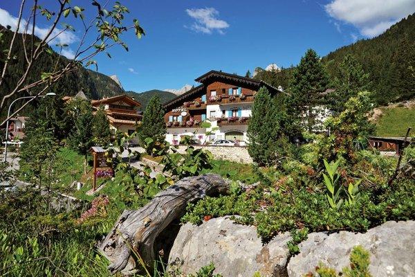 Ausflugsagentur Wild in the Dolomiti com.xlbit.lib.trad.TradUnlocalized@2f6d6e24
