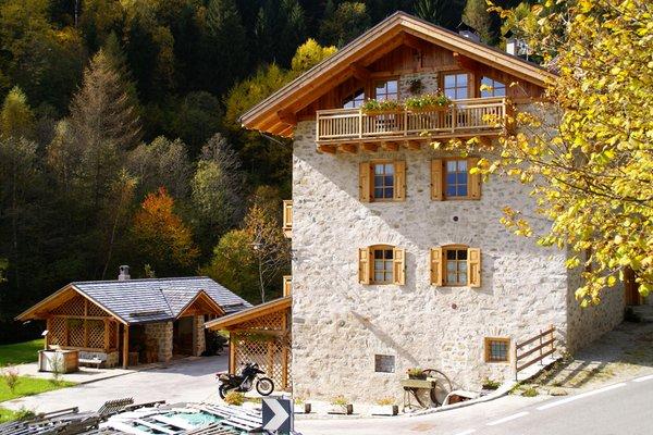 Foto Außenansicht im Sommer Casa Le Marinolde