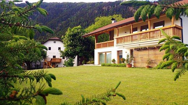 Foto estiva di presentazione Appartamenti in agriturismo Pitterlehof
