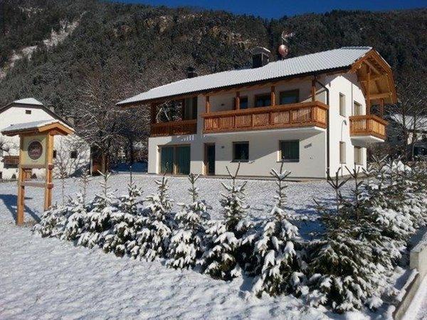 Foto invernale di presentazione Appartamenti in agriturismo Pitterlehof
