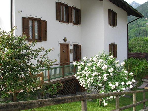 Foto estiva di presentazione Apartment Relax Natura