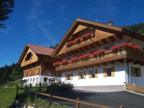 Foto estiva di presentazione Oberpappinghof - Appartamenti in agriturismo 2 fiori