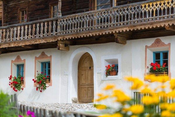 Photo exteriors in summer Rainhof