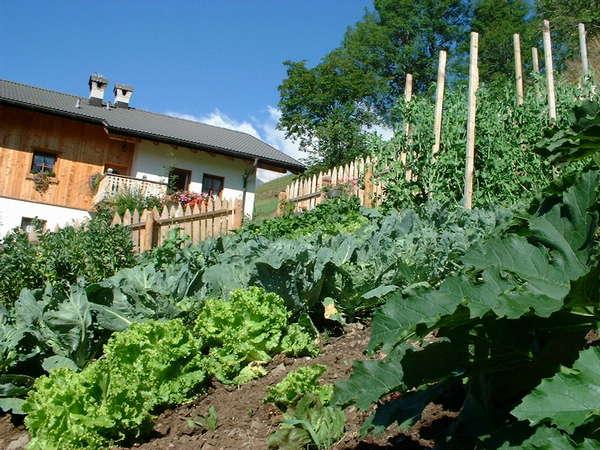 Foto del giardino Arabba - Livinallongo del Col di Lana