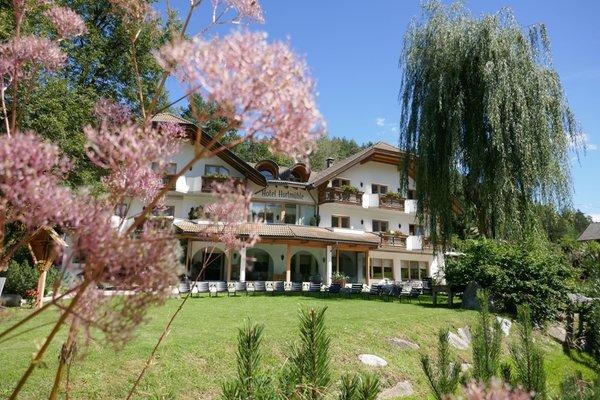 Summer presentation photo Hotel Kronblick - Hurtmühle