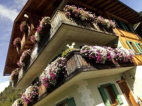 Foto estiva di presentazione Appartamenti Tarin