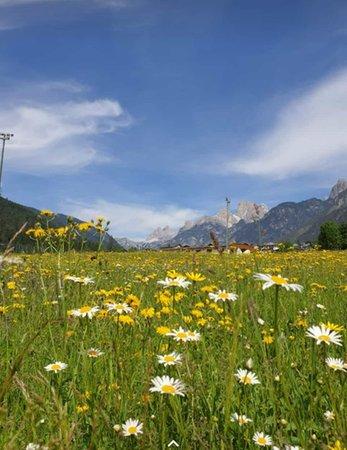 Gallery Cortina d'Ampezzo e dintorni estate