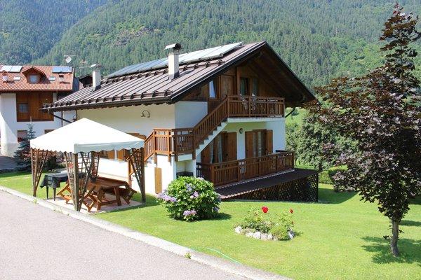 Sommer Präsentationsbild Ferienwohnungen Villetta Val di Sole