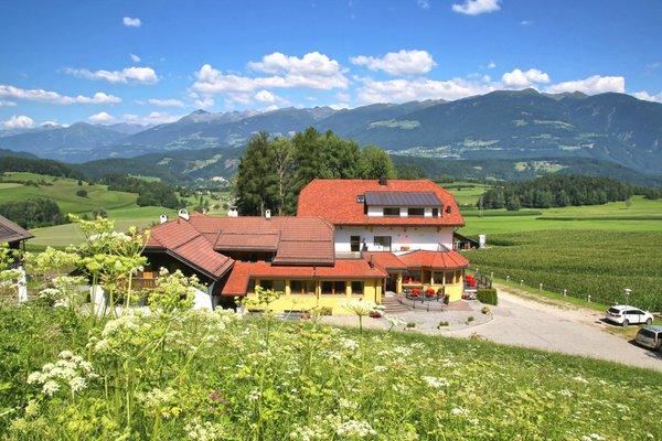 Foto esterno in estate Pichlerhof