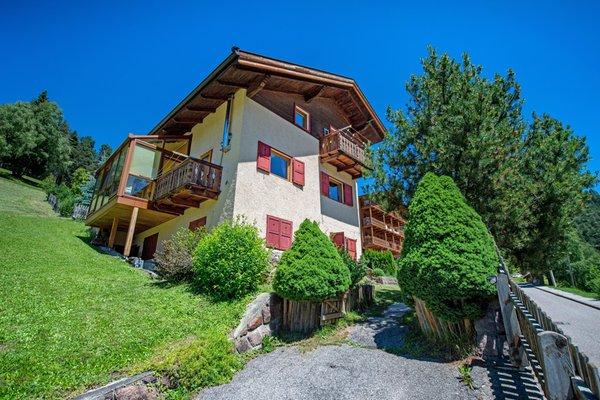 Foto estiva di presentazione Appartamento Sellablick