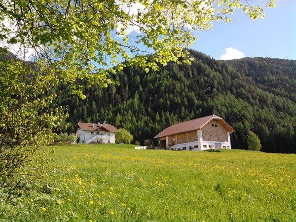 La posizione Appartamenti in agriturismo Beikircherhof San Lorenzo di Sebato