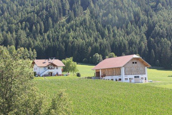 Foto estiva di presentazione Appartamenti in agriturismo Beikircherhof