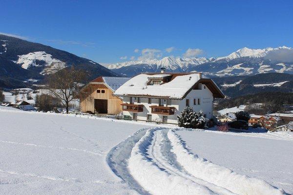 Foto invernale di presentazione Appartamenti in agriturismo Beikircherhof