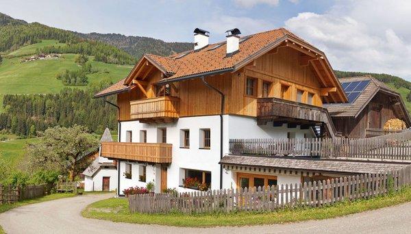 Foto estiva di presentazione Appartamenti in agriturismo Gschliererhof