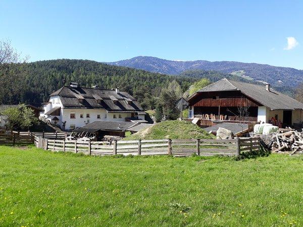 Foto esterno in estate Oberwieserhof