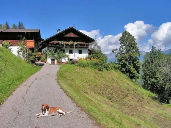 Foto estiva di presentazione Appartamenti in agriturismo Rastnerhof